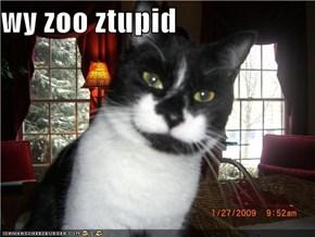 wy zoo ztupid