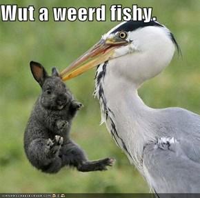 Wut a weerd fishy.