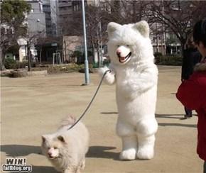 Dog Walker WIN