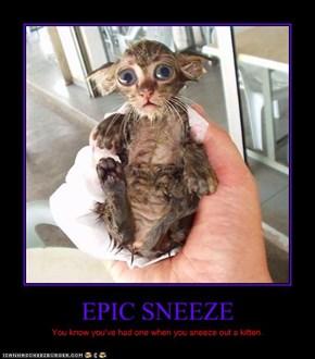 EPIC SNEEZE
