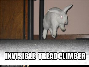 INVISIBLE  TREADCLIMBER