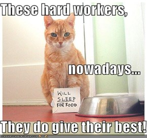These hard workers, nowadays... They do give their best!
