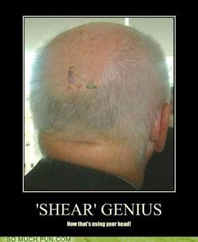 Shear Genius