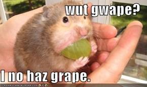 wut gwape?  I no haz grape.