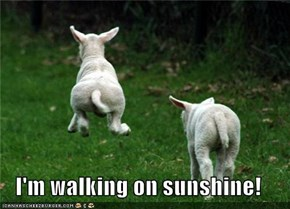 I'm walking on sunshine!