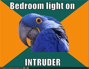 Bedroom light on  INTRUDER