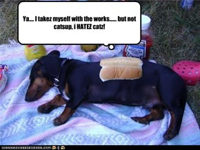 weiner doggie gets a say un what he gets on his hawtdog