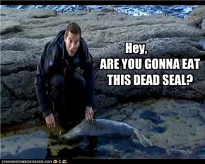 Are You Gonna Eat This Dead Seal?