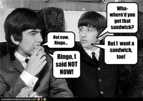 Not now, Ringo...