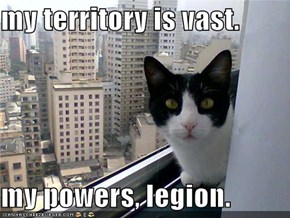 my territory is vast.  my powers, legion.