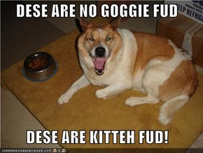 DESE ARE NO GOGGIE FUD  DESE ARE KITTEH FUD!