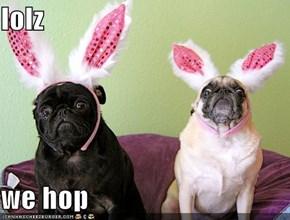 lolz  we hop