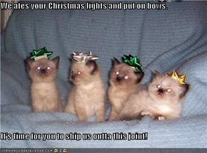 We ates your Christmas lights and put on bows.  It's time for you to ship us outta this joint!