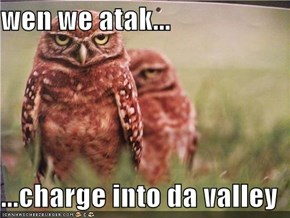 wen we atak...  ...charge into da valley