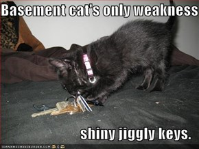 Basement cat's only weakness  shiny jiggly keys.