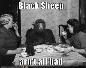 Black Sheep  arn't all bad