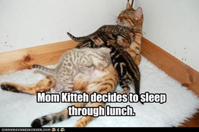 Mom Kitteh decides to sleep through lunch.
