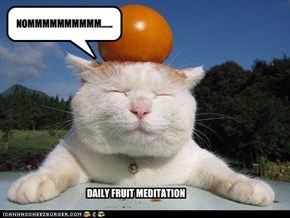 DAILY FRUIT MEDITATION
