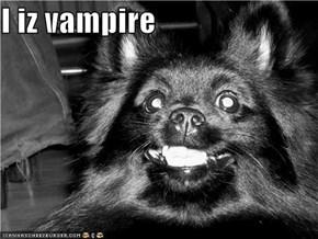 I iz vampire