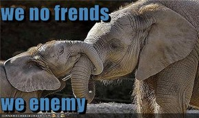 we no frends  we enemy
