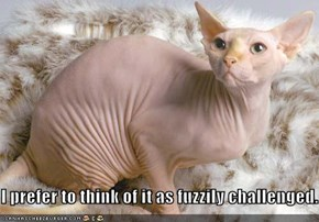 I prefer to think of it as fuzzily challenged.