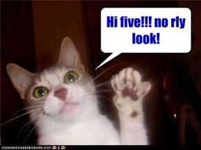 Hi five!!! no rly look!