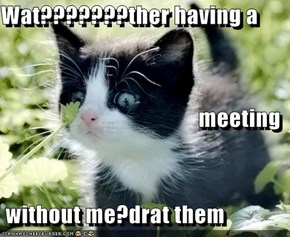 Wat???????ther having a meeting  without me?drat them
