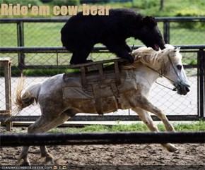 Ride'em cow-bear