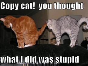 Copy cat!  you thought  what I did was stupid