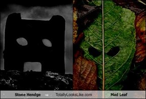 Stone Hendge Totally Looks Like Mad Leaf