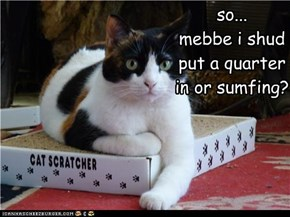 so... mebbe i shud put a quarter in or sumfing?