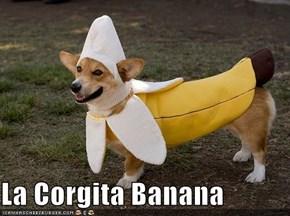 La Corgita Banana