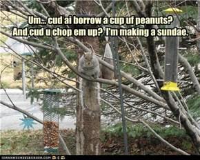 Um... cud ai borrow a cup uf peanuts? And cud u chop em up?  I'm making a sundae.