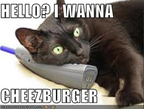 HELLO? I WANNA  CHEEZBURGER