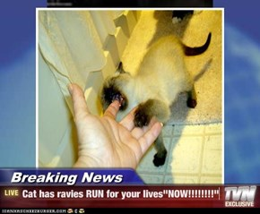 "Breaking News - Cat has ravies RUN for your lives""NOW!!!!!!!!"""