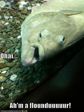 Ohai... Ah'm a flounduuuuur!