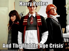 Harry Potter  And The Middle Age Crisis