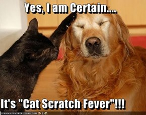"Yes, I am Certain....  It's ""Cat Scratch Fever""!!!"