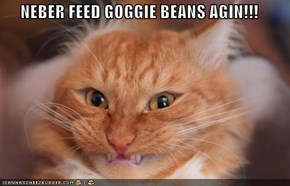 NEBER FEED GOGGIE BEANS AGIN!!!