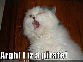 Argh! I iz a pirate!