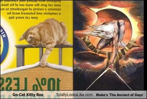 Go-Cat Kitty Box Totally Looks Like Blake's 'The Ancient of Days'