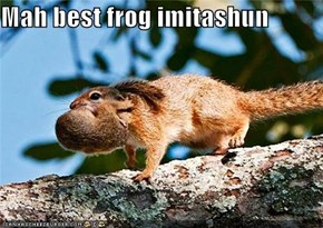 Mah best frog imitashun