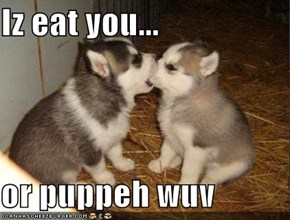 Iz eat you...  or puppeh wuv