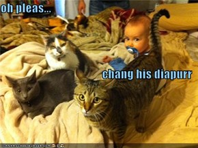 oh pleas... chang his diapurr
