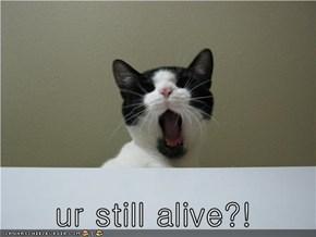 ur still alive?!
