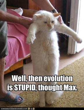 Well, then evolution  is STUPID, thought Max.