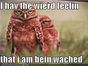 I hav the wierd feelin  that i am bein wached