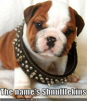 The name's Shnufflekins