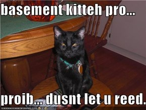 basement kitteh pro...  proib... dusnt let u reed.
