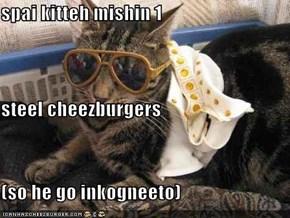 spai kitteh mishin 1 steel cheezburgers (so he go inkogneeto)